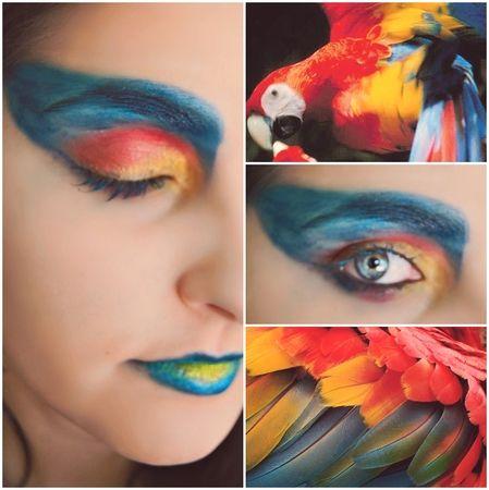 Parrot Face Paint Ideas