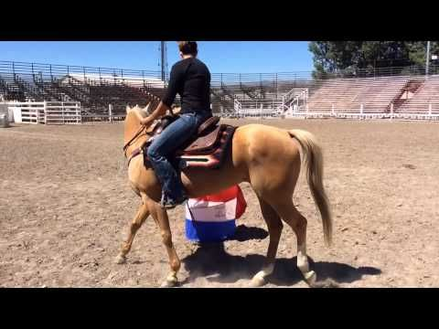Fallon Taylor Barrel Racing Tips: One Barrel Drill