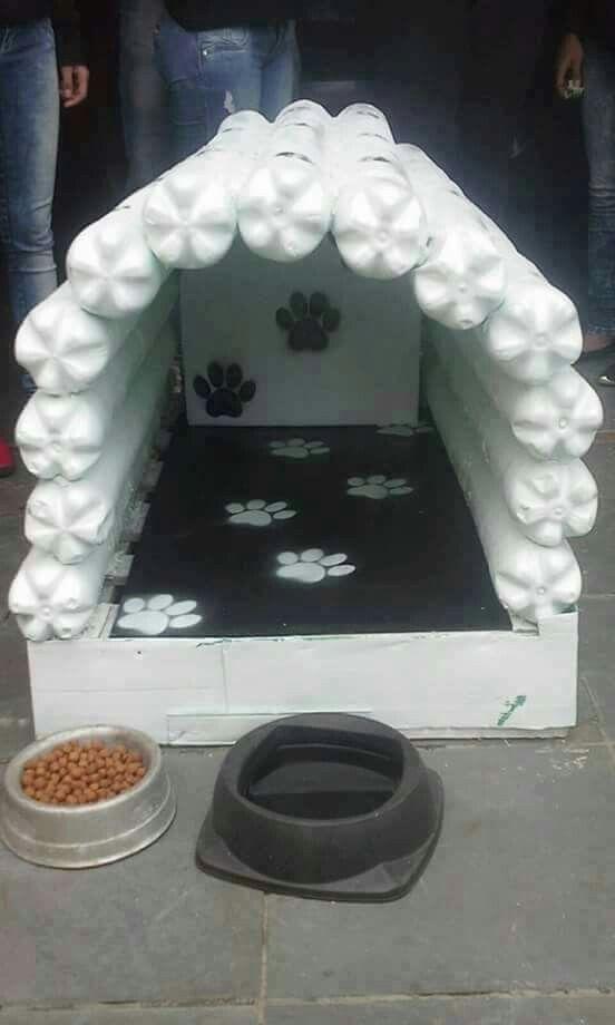 Cucha de perro con botellas de plastico y palet