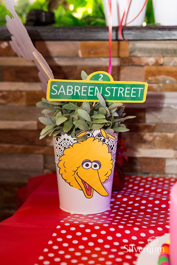 A cute Big Bird party decoration. For Sesame Street themed parties in Melbourne, Australia, visit http://easybreezyparties.com.au/party-themes/sesame-street-theme.html #sesamestreet #easybreezyparties (Photo: Silvergum Photography)