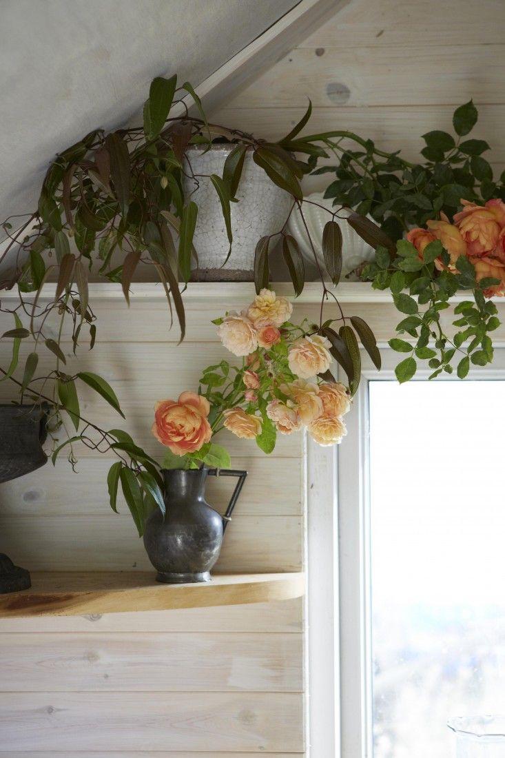 florist-studio-roses-vines-vase-tamara-hall-britt-willoughby-dyer-BN2A0181
