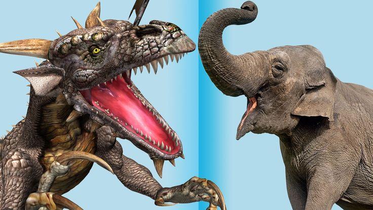 Dragon v/s Elephant Finger Family Nursery english 3d  rhymes |  Children...