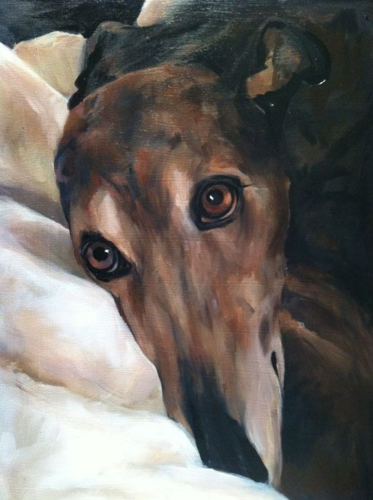 Gracie, a retired Greyhound. Oil on canvas. Absolutely stunning painting. . . She is beautiful. www.juliepfirsch.com