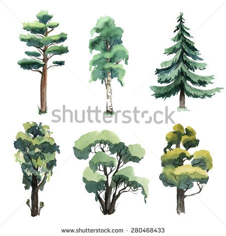 Set of watercolor trees.  illustration - stock photo