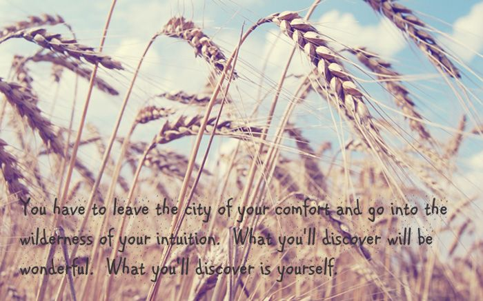 You have to leave the city of your comfort and go into the wilderness of your intuition. What you will discover will be wonderful: Yourself. ~ Alan Alda #travel #quotes