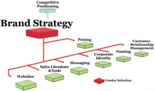 Your brand strategy will reinforce your positioning in the market. Follow this process for developing a comprehensive and effective strategy for your brand.