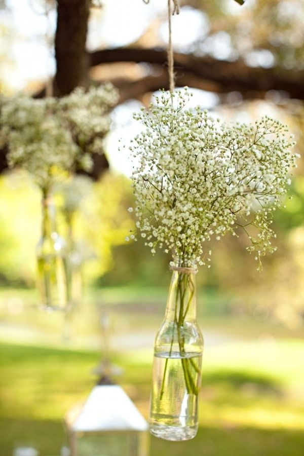 washed out beer bottles with babys breath - cute and inexpensive idea. @Abby Klein.