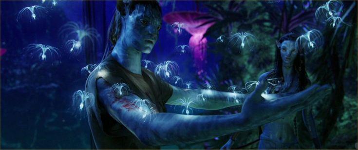On Avatar, The Movie (Spoiler Alert) - Sociological Images
