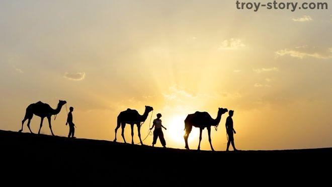 Three Days on a Camel near Jaisalmer, India... in 45 degree C (113F)  heat - http://troy-story.com/three-days-camel-near-jaisalmer-india-45-degree-c-113f-heat/ #travel #india #camel #desert