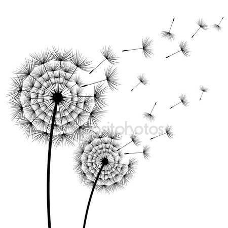Scarica - Due denti di Leone di bei fiori stilizzati neri e volante lanugine su priorità bassa bianca. Moderno alla moda floreale di estate o primavera carta da parati. Sfondo di natura trendy. Illustrazione di vettore — Illustrazione stock #141205578