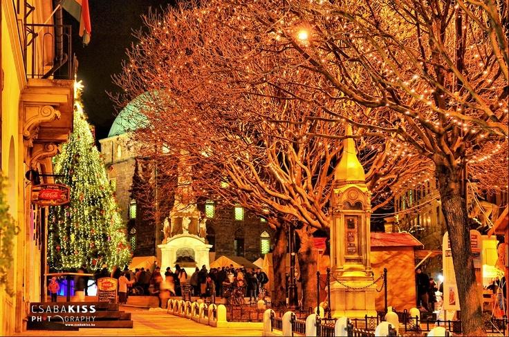 Pécs Christmas http://www.facebook.com/photo.php?fbid=10151202310303546=a.128655753545.107372.575673545=3