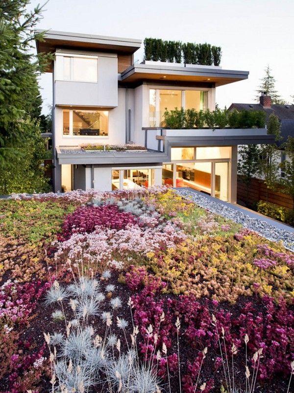 Extensive Dachbegrünung-auf Garage-nachhaltiges Wohnhaus