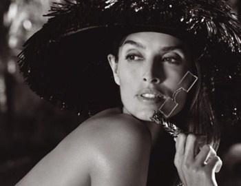 Περισσότερο από ένα αιώνα ο οίκος Cartier βρίσκεται στην κορυφή των παγκόσμιων luxury brand. Ο ίδιος ο Cartier υπήρξε δημιουργός και σχεδιαστής κοσμημάτων για τους βασιλείς και έγινε διάσημος ως ο «βασιλιάς των κοσμημάτων». Με