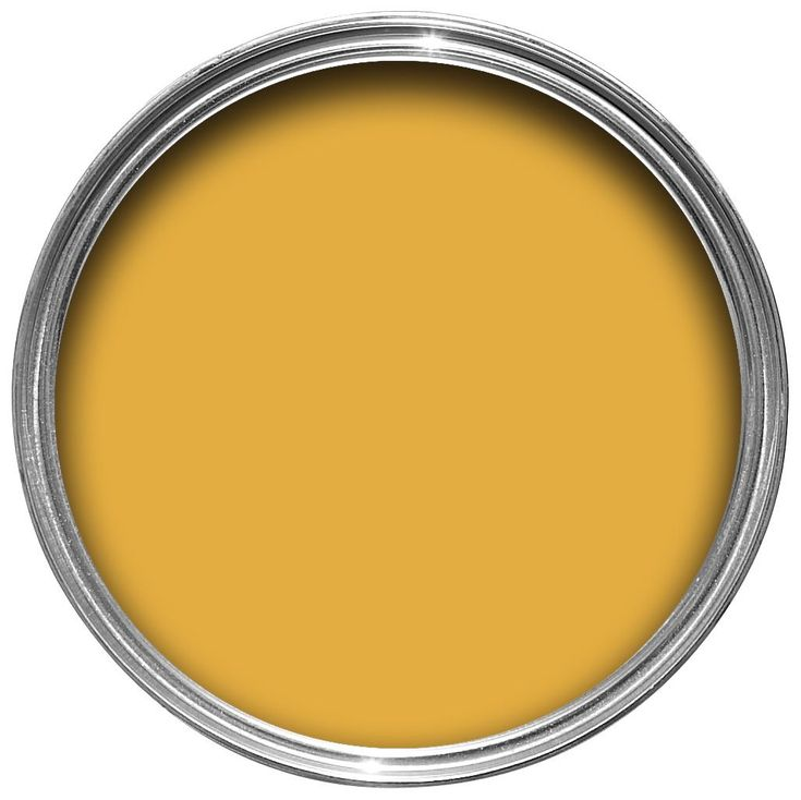 Dulux Kitchen + Honey Mustard Matt Emulsion Paint 50ml Tester Pot | Departments | DIY at B&Q