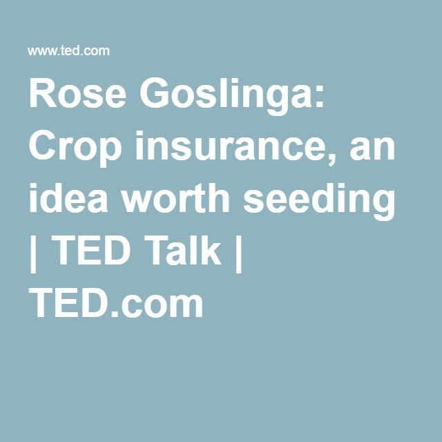 Rose Goslinga: Crop insurance, an idea worth seeding | TED Talk | TED.com
