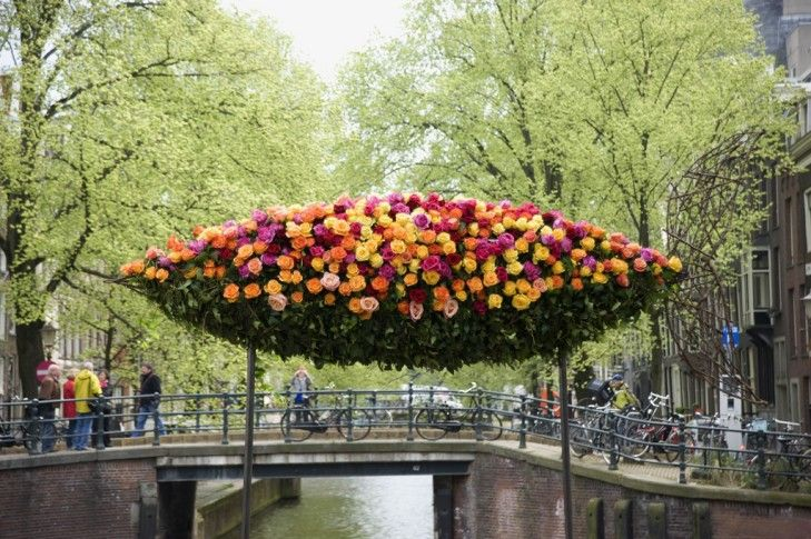 wunderkammer: the famous rose fish adorning the Prinsengracht in Amsterdam | pic by jeannine govaers
