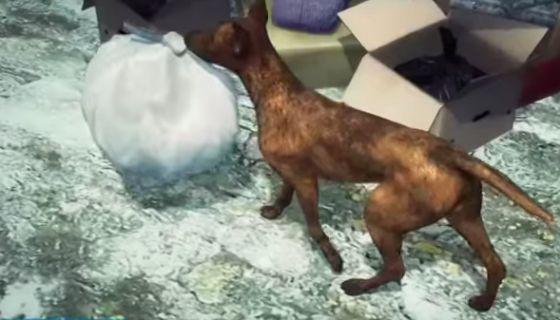 Dog rescues abandoned newborn baby left inside a trash dump   http://gracevine.christiantoday.com/video/dog-rescues-abandoned-newborn-baby-left-inside-a-trash-dump-5024