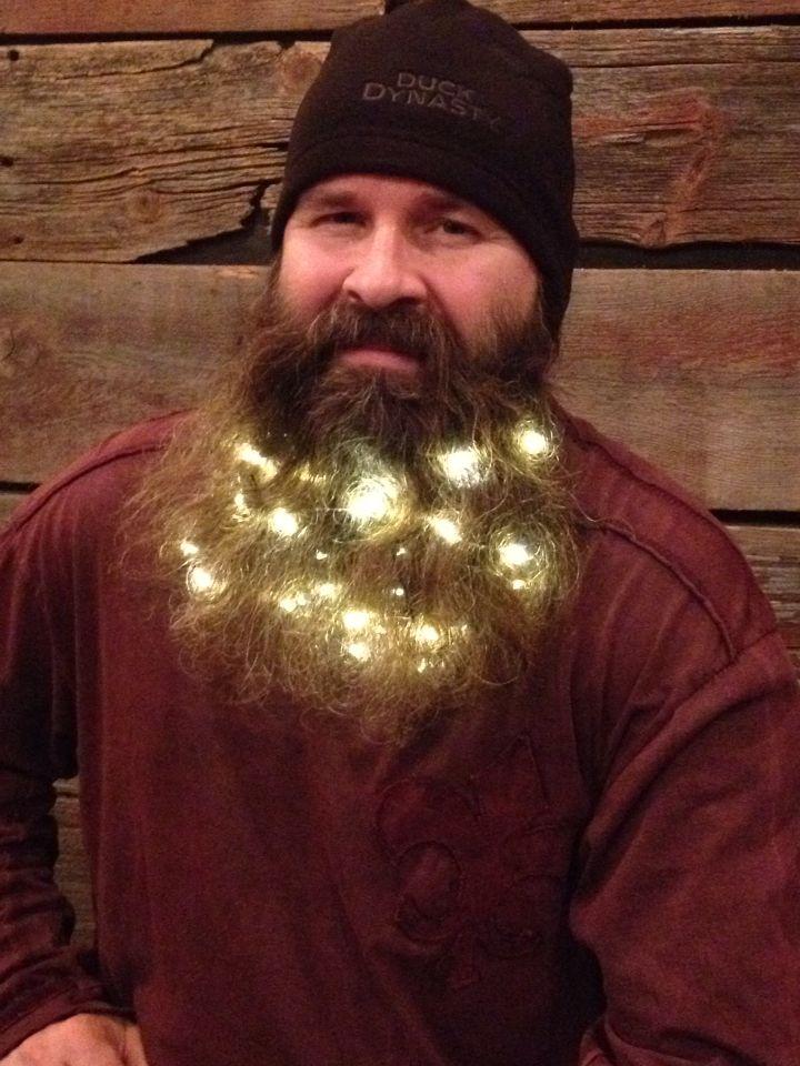 Christmas beard. Just add lights! | Fun | Pinterest