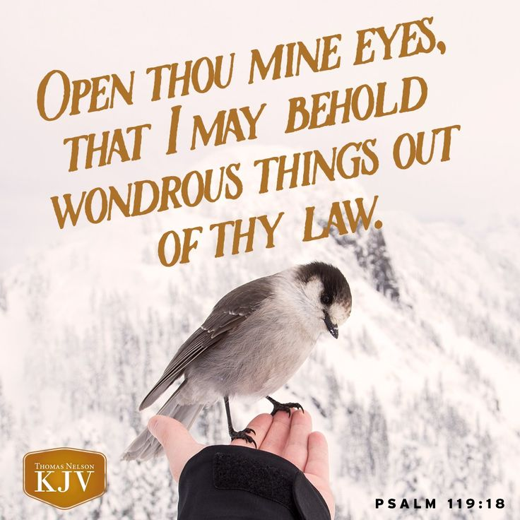 """Open thou mine eyes, that I may behold wondrous things out of thy law."" ‭‭Psalms‬ ‭119:18‬ ‭KJV‬‬"