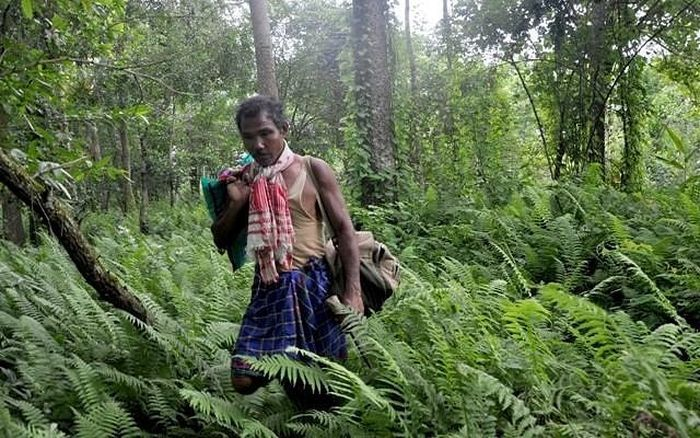 Meet The Assamese Man Who Dedicated 30 Years Of His Life To Grow An Entire Forest