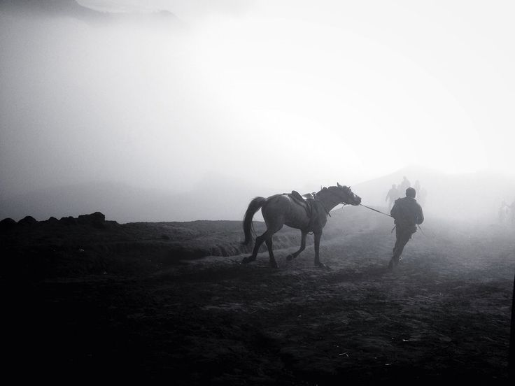The Horseman in the fog of Mount Bromo