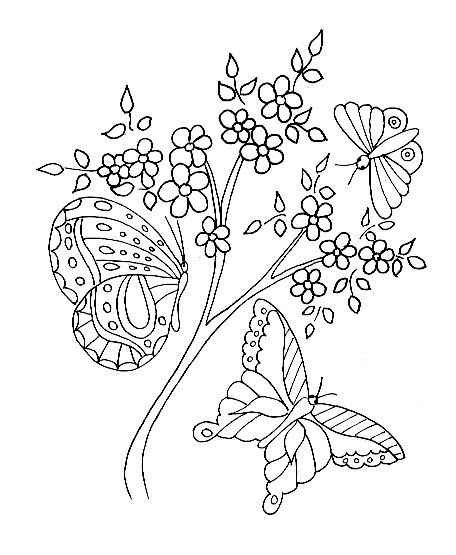 butterfly coloring pages cartoon animals funny Graphics