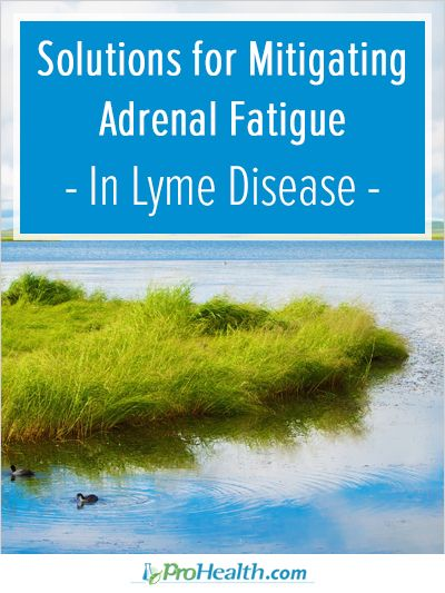 In this article, author and Lyme survivor Connie Strasheim shares solutions for mitigating adrenal fatigue in Lyme disease.  - ProHealth.com