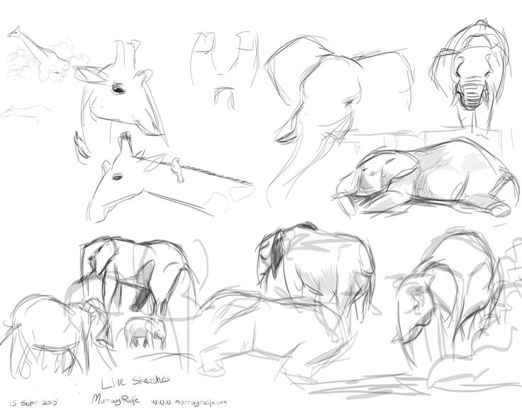 Warm-up sketches