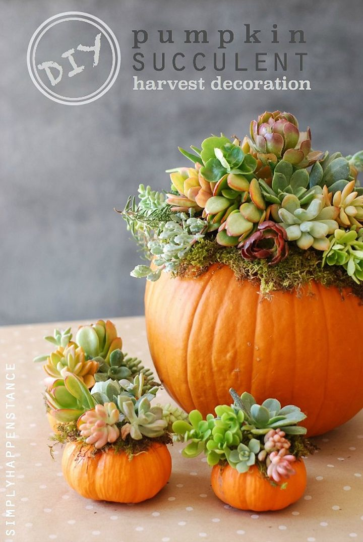 Herbst Tischdeko Ideen, die für ein schönes Ambiente sorgen