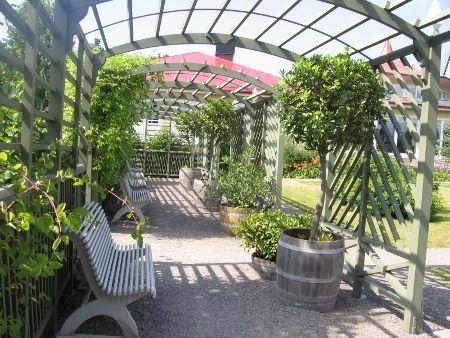 Camitzka trädgården