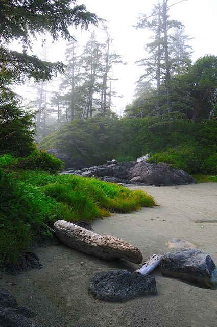 VANCOUVER ISLAND... Oh how I miss you!!