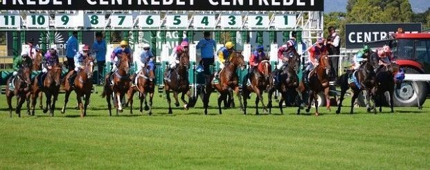 Tips for Betting - Now, you can find a lot of horse racing betting systems in which the judi kuda is completely based on the number of criteria as well as analysis of horse type. Some of the different kinds of horse betting systems are included trainer form, horse name, lane draws and jockey form and so on. Receive Free Betting Tips from Our Pro Tipsters Join Over 76,000 Punters who Receive Daily Tips and Previews from Professional Tipsters for FREE