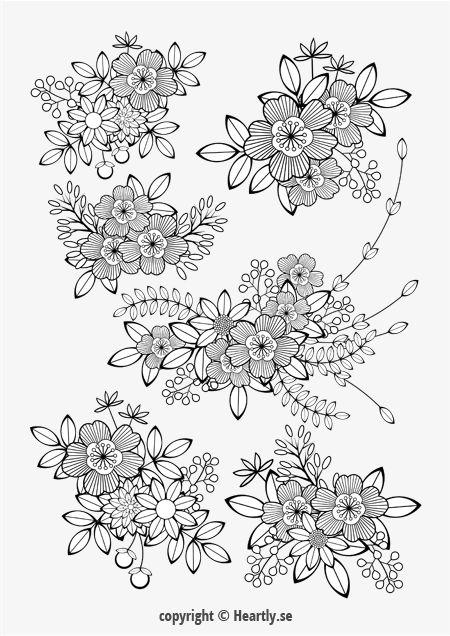 coloring page book mlarbok fr vuxna 011