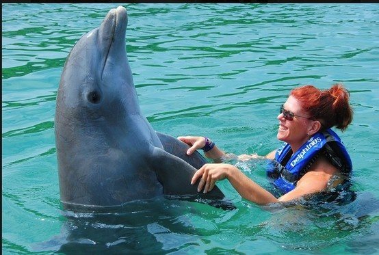 Swimming with the dolphins on my bday last year in Rivera Maya, Mexico!  AMAZING!! #swimmingwithdolphins
