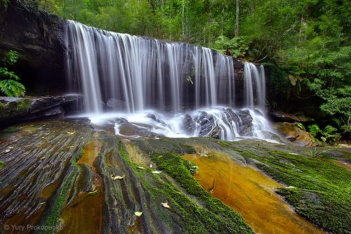 Lower Somersby Falls. Brisbane Water National Park, Central Coast, NSW, Australia