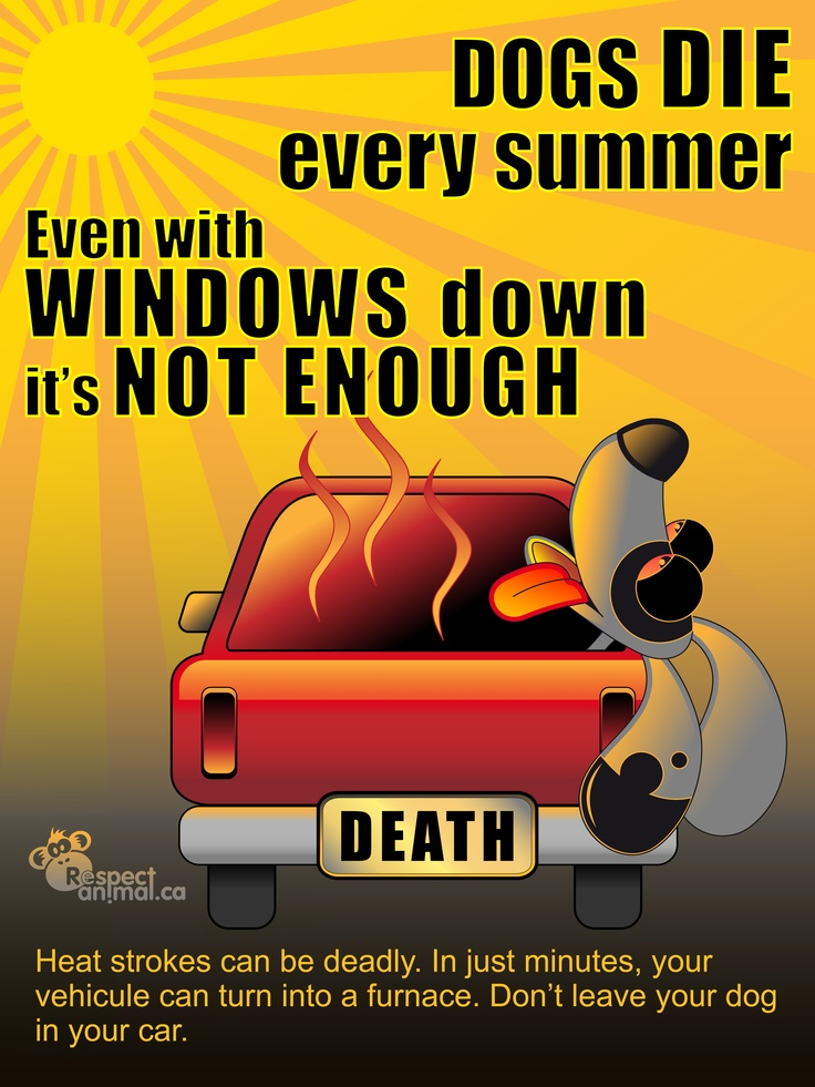 Can A Cars Interior Heat Up With The Windows Down