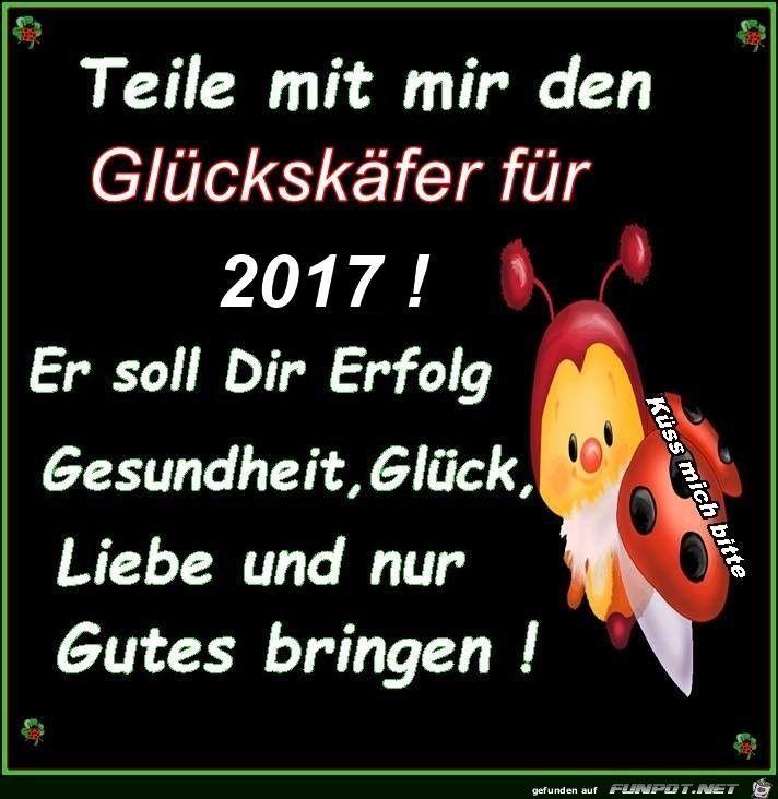 Gl�cksk�fer 2017