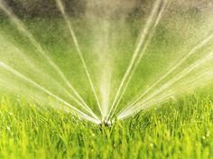 Gartenbewässerung mit System #News #Gartenpflege