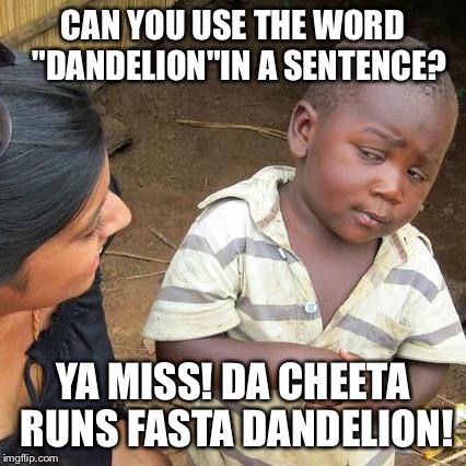 Third world English lesson    CAN YOU USE THE WORD