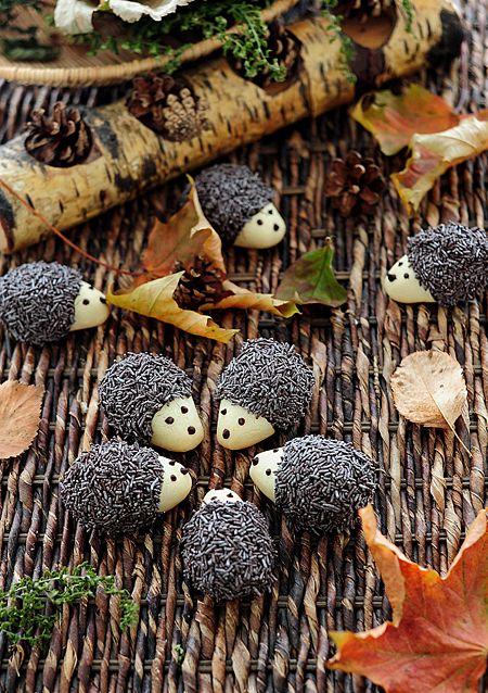 Hedgehog Cookies! [Tortelina]