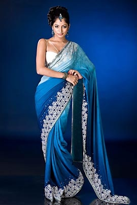 Sari by Satya Paul
