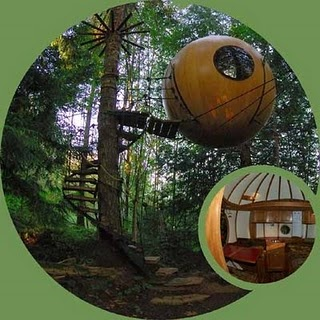 treehouse hotel on vancouver island