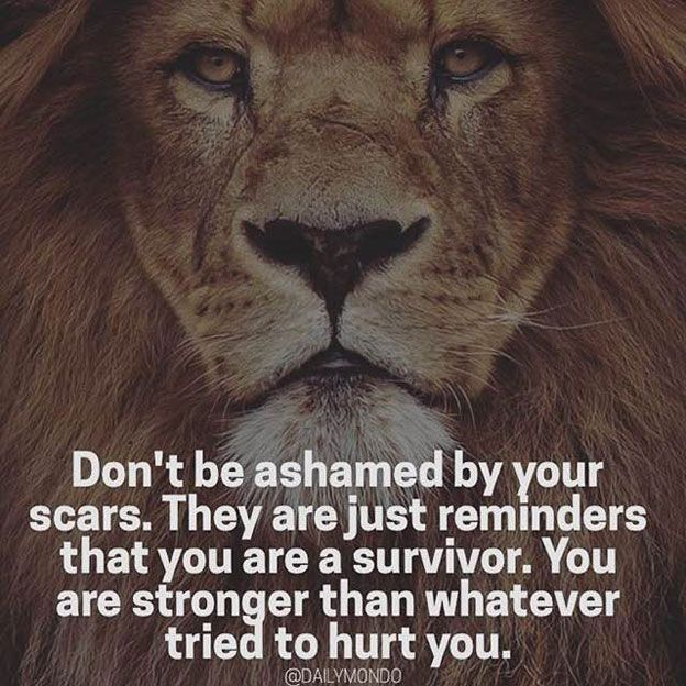 Inspirational Courage Quotes: 43 Best LION QUOTES & Motivational Pictures