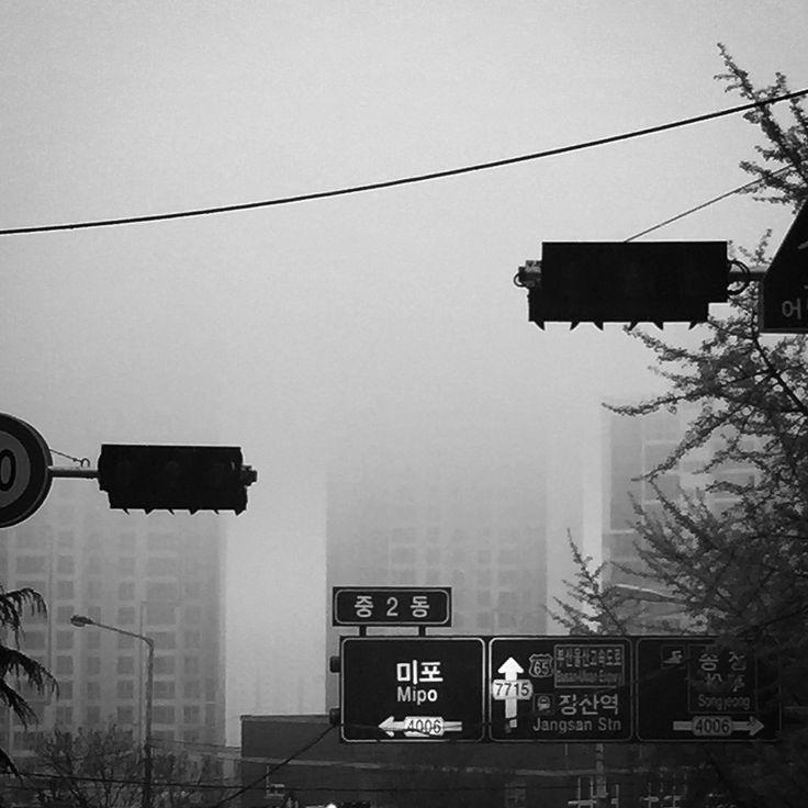 #부산에서가장무서운동네 #중2동