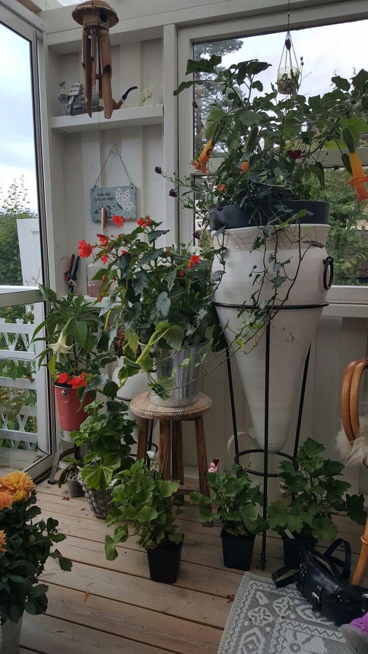 Nye blomster urner til hagen