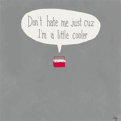 This made me laugh!  Don't hate me just cuz I'm a little cooler.