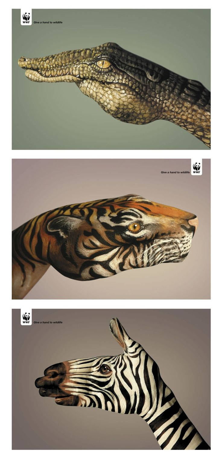 More exquisite hand illustration, this time for the 'Give a hand to wildlife' campaign for the World Wildlife Fund (WWF) by design agency Saatchi & Saatchi Simko, Geneva. The hand painting for the...