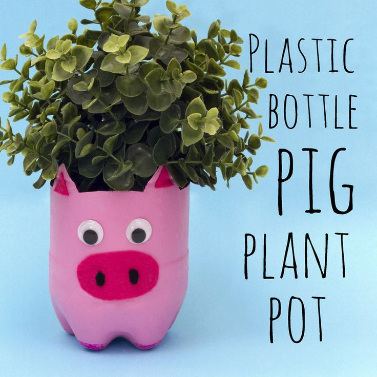 Make this cute pig plant pot out of a plastic bottle! It's such a simple craft for kids to make, you could even make all the farmyard animals!