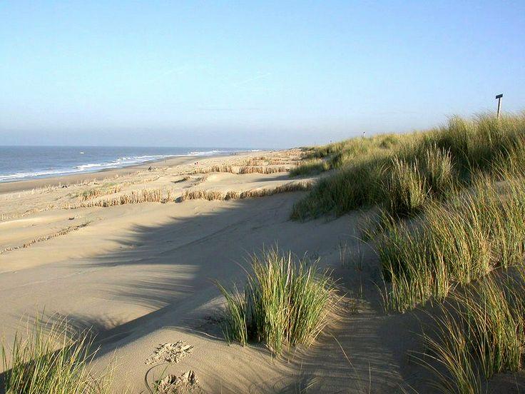 Strand am Leuchtturm von Texel