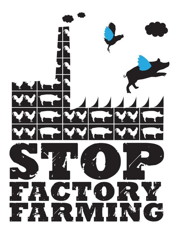 factory farming cruel or not We have not yet vetted animal advocates' claims about the extent to which  industrial  american society for the prevention of cruelty to animals (aspca)12  animal  the relatively small field of factory farming groups we heard about  from.